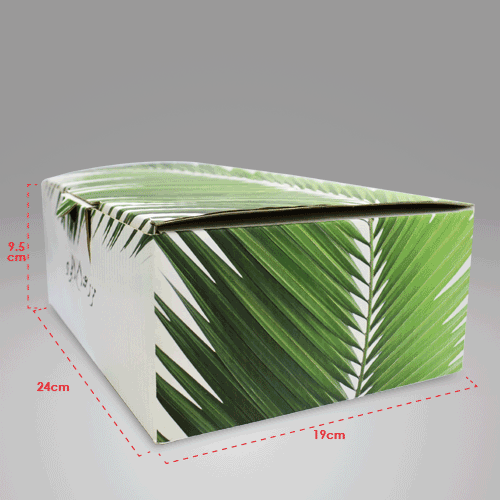 Corrugated Box 24x19x9.5cm