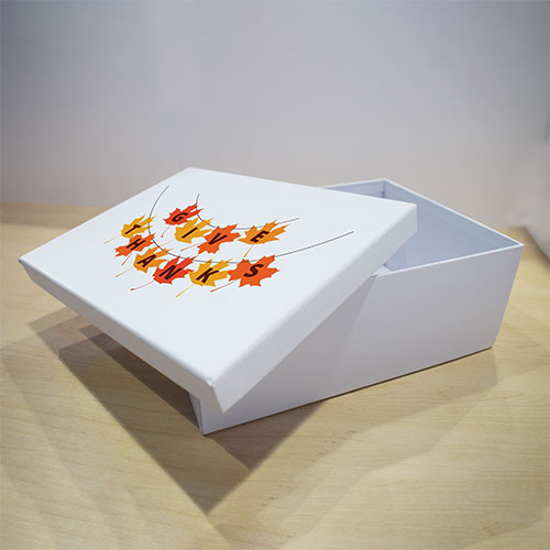 Gift Box 25x18x10